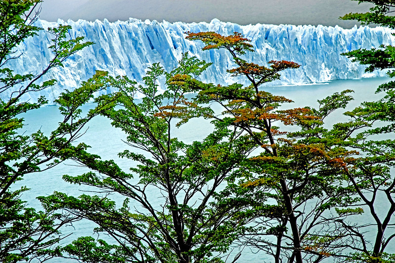 Postcards From Patagonia*