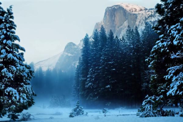 Yosemite December*