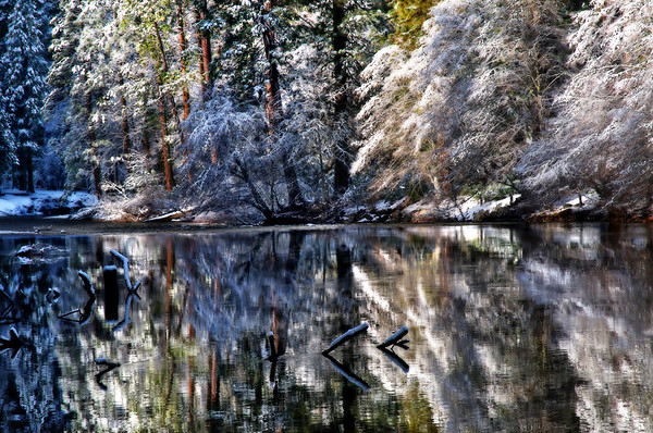 Reflections Of Winter*