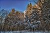 Snow covered - Waterbury, VT