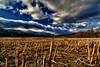 Cloud Tsunami - Stowe, VT
