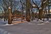 Snow Gate - Waitsfield, VT