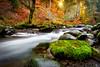 ~Sol Duc River~