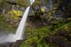 ~Elowha Falls~