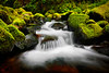 ~Portrait of a Stream~<br /> <br /> This is a tiny section of Ruckel Creek just downstream from a waterfall deep in the Columbia River Gorge.<br /> Sometimes hunting for the small intimate scenes are just as fun to photograph as the larger landscapes.