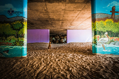 Peter chilling under the Mast Park bridge in Santee, California.