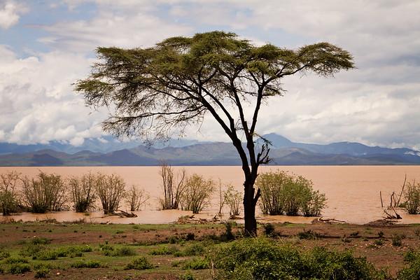 Lake Chamo | Ethiopia