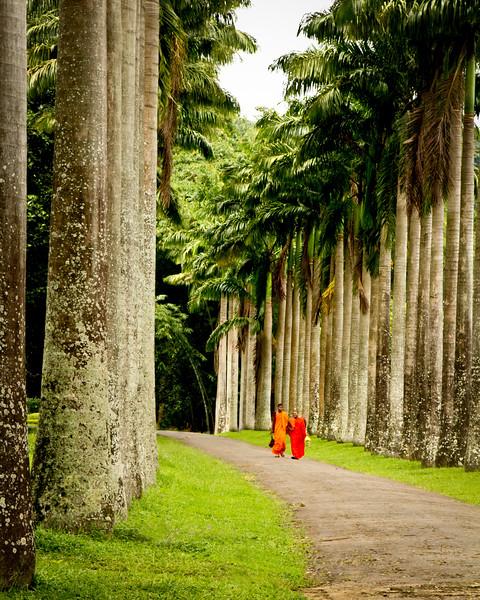 Buddhist Paradise