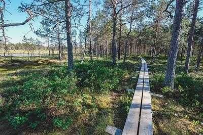 Lahemaa Estonia