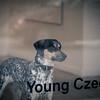 Young Czech