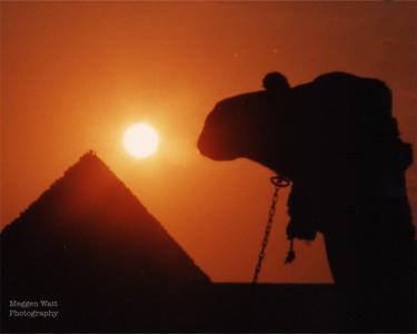 Egypt, 1989