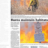 Burns maintain habitats