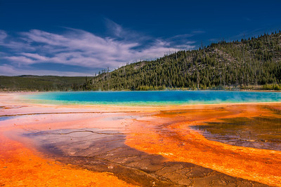 Grand prismatic spring is the largest and one of most colorful spring in Yellowstone national park! The colors are especially vibrant in sunshine. Beneath is the magma chamber of the super volcano that heats up the water resulting into hot spring. Fine particles in the water scatter the sunlight to create intense blue color. The orange colors are created by thermophiles, heat loving microorganisms!! The best view of grand prismatic is aerial or you could climb up the hills next to it and shoot from there.