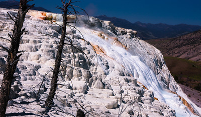 Mammoth hot springs. Terrace created as hot water from the spring cooled and deposited calcium carbonate