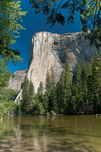 We could see rock climbers on the face of El Capitan