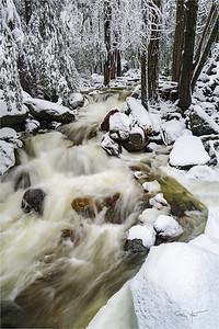 Wonderland, Bridalveil Creek, Yosemite