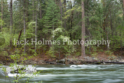 Yosemite_May2011-20