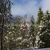 Yosemite_May2011-32