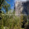 Yosemite_May2011-34
