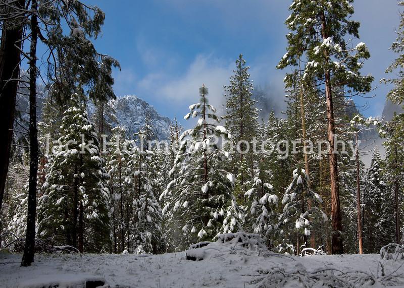 Yosemite_May2011-25