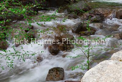 Yosemite_May2011-11