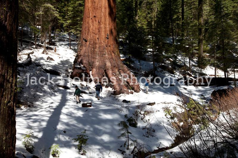 Yosemite_May2011-55