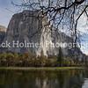 Yosemite_May2011-5