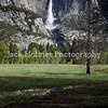 Yosemite_May2011-8