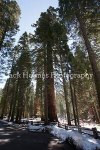 Yosemite_May2011-46