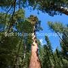 Yosemite_May2011-53