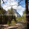 Yosemite_May2011-61