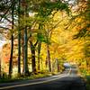 North Eagleville Golden Canopy