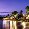 Purple Palm Sunrise