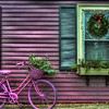 Yesterday I took a walk around downtown Portsmouth and the surrounding neighborhoods to scope out the area and find some new places to go shoot.  As I turned down one of the side streets I found this awesome purple house.  When I walked up, this awesome purple bike.  Anyway I took a couple pictures but only this one came out.  Hope you enjoy!