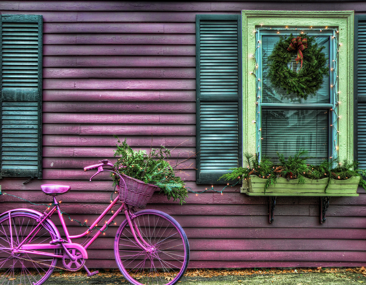 The Purple Bike
