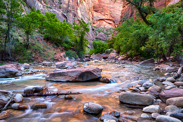 Zion Reflections