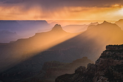 Rays in the Canyon