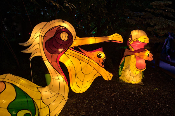 Asian Lantern Festival 2018 -- Cleveland Metroparks Zoo