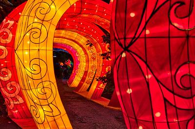 Asian Lantern Festival 2018 -- Cleveland Metroparks Zoo