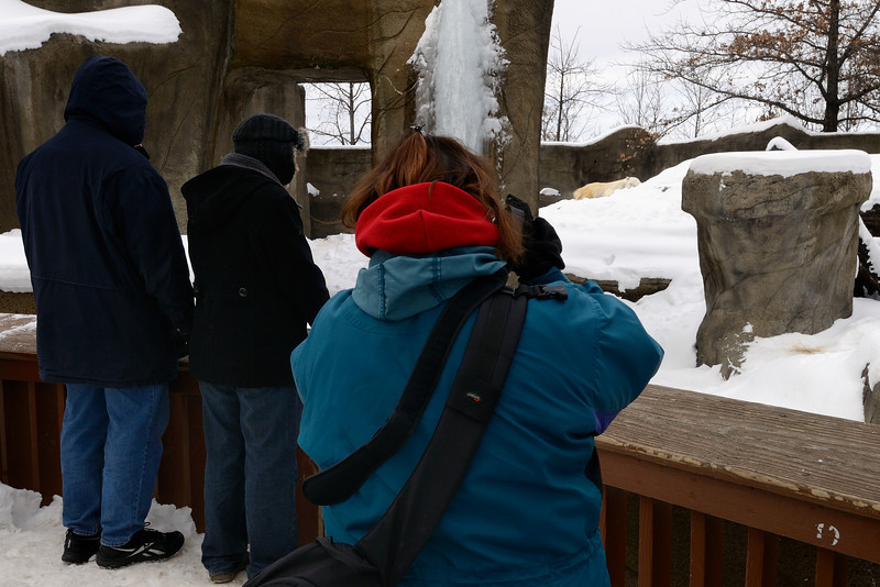 Photographer - Cleveland Metroparks Zoo