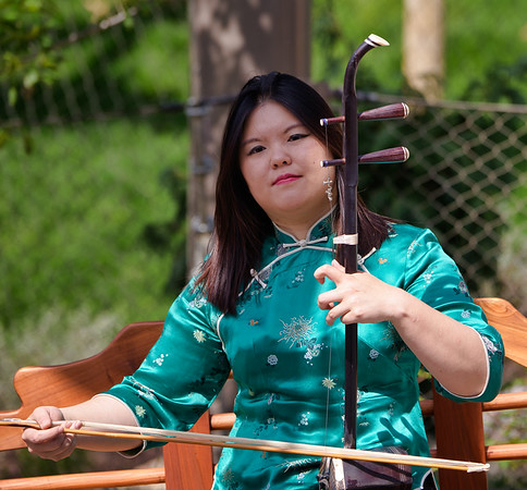 Musician at the opening of Asian Highlands