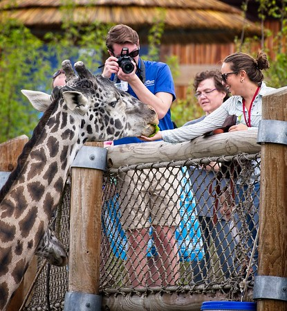 Cleveland Metroparks Zoo Spring 2019