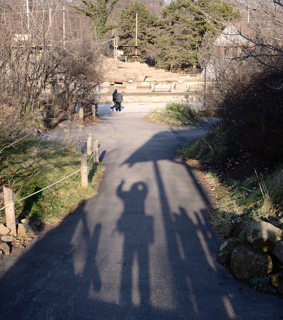 My Shadow went to the Zoo today..... He likes to look at the animals shadows!  He had fun!