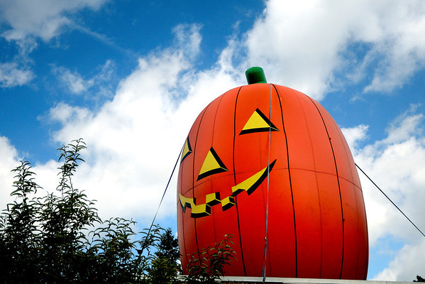 The Great Pumpkin at the Cleveland Metroparks Zoo
