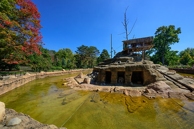 A Fall Day at the Cleveland Zoo