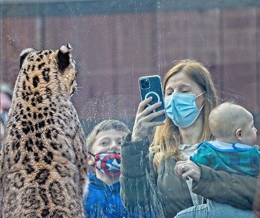 Cleveland Metroparks Zoo 2021