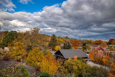 Fall Colors at the Cleveland Metroparks Zoo
