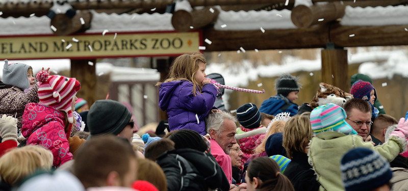 Happy Noon Year at the Cleveland Metroparks Zoo