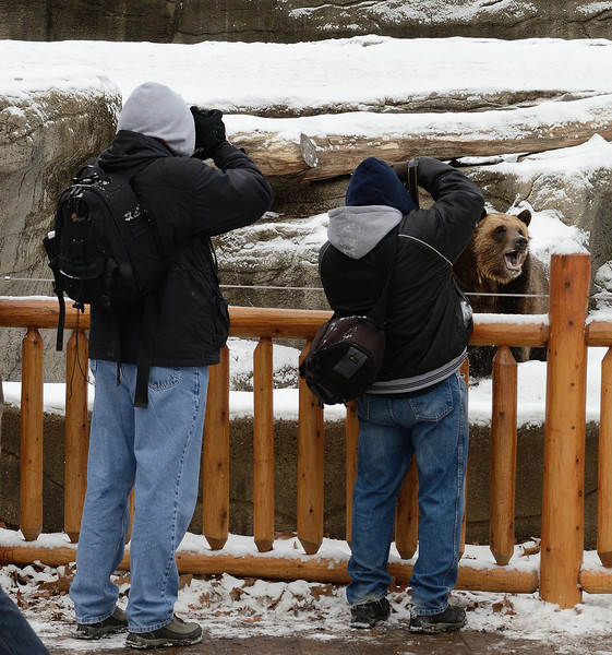 Paul and Doug and a Grizzly Bear