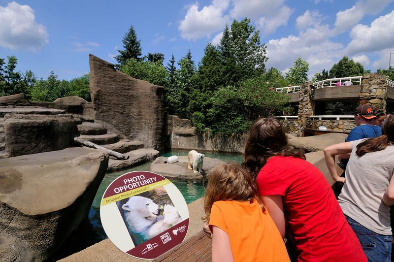 Zoo at 12mm Part 2